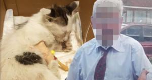 Emsal niteliğinde karar! Yavru kediye tecavüz eden sapık, tutuklandı