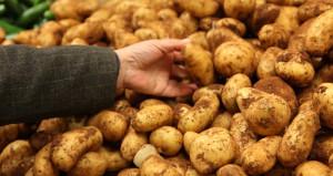 Fiyatı fırlayan patatesin tanesi 1 TLden satılıyor