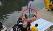 Vatandaşların tekne turu yaparken fark ettiği varilden dehşet çıktı