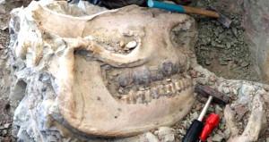 Anadolu'nun göbeğinde bulundu! Tam 8,5 milyon yıllık!