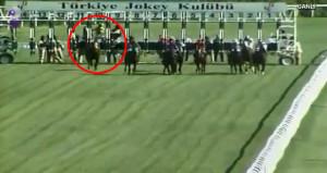 Jokeyi üstünden atan at, yarış sonunda şovunu yaptı