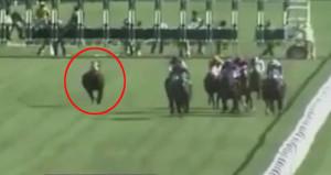 Jokeyini sırtından atan at birinci oldu