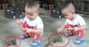 Sevimli çocuk minik elleriyle kuşları tek tek besledi