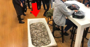 Appleda şoke eden olay! Bir küvet dolusu bozuk parayla iPhone aldı
