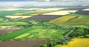 Hazineye ait tarım arazileri için 90 bin başvuru yapıldı