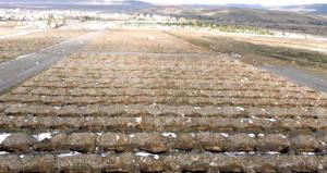 Görüntü Türkiyeden! Ekipler, günlerce çalışıp mezar yeri hazırladı