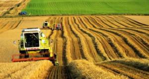 Çiftçileri sevindiren gelişme! 2019da destek 1,6 milyar TL artırılacak