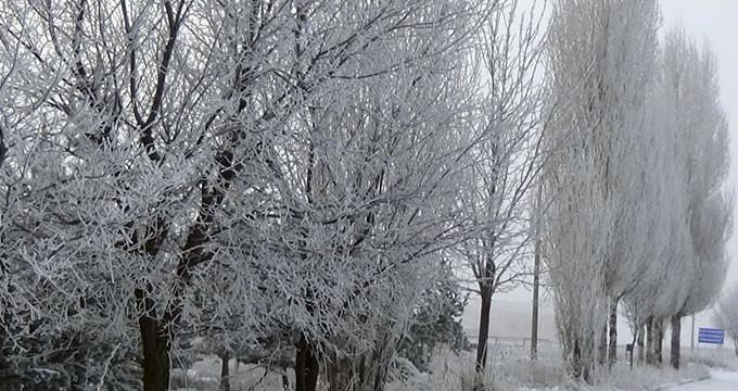 Sibirya soğuklarının etkili olduğu kentte her yer dondu
