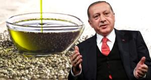 Erdoğan müjdeyi verdi, 19 ile piyango vurdu!