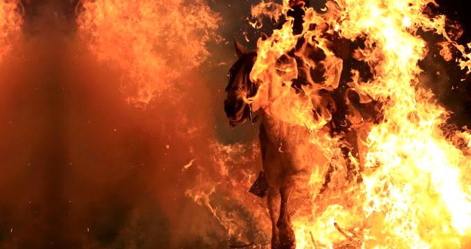 Bir garip gelenek! Rahibin kutsadığı atlar, ateşin üstüne sürüldü