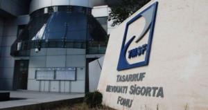 TMSF, iki şirketi satışa çıkardı! İhaleler 12-13 Şubat tarihlerinde
