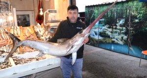 Marmarada yakalanan kılıç balığı, koyun fiyatına satıldı