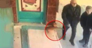Yoldan geçenlere sataşan haylaz kedi sosyal medyada gündem oldu
