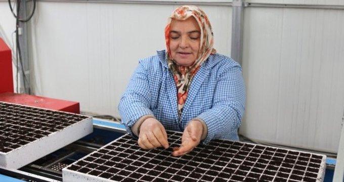 Karadeniz'de bir ilk! Tüm Türkiye'nin ihtiyacını karşılamaya talip