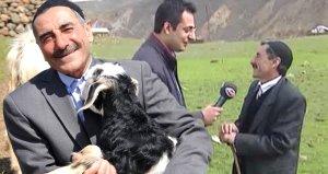 8 yıl sonra yine 'Yas yas gley' dedi, bakın bu sefer koyunlar ne yaptı