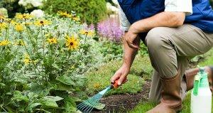 189 bin TL maaşla çalışacak bahçıvan aranıyor
