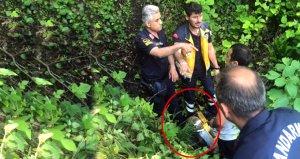 87 yaşındaki adam, 8 gün boyunca derenin suyunu içerek hayatta kaldı