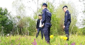 Salep Soğanı Toplayan 4 Kişiye 240 Bin Lira Ceza Kesildi