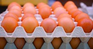Yumurtanın kolisi 4,5 liraya kadar düştü