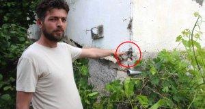 Böceklerin istilasına uğrayan mahalleli isyan etti: İnsanlar uyuyamıyor, yemek yiyemiyor, evlerini terk ettiler