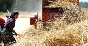 Çiftçiye ve hayvancılığa 2019 yılında verilecek destekler belli oldu