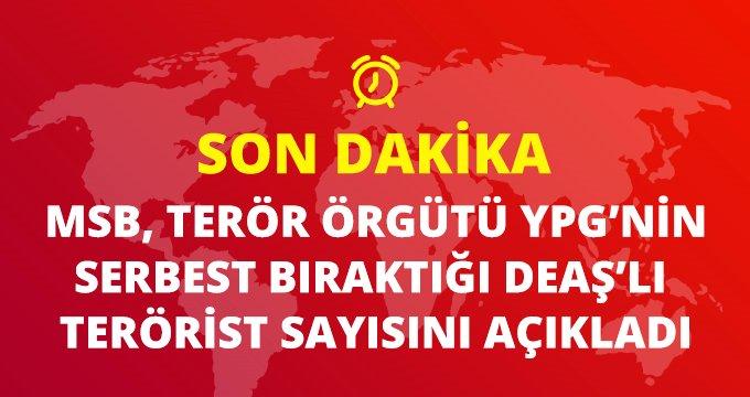 Son dakika: MSB, Terör örgütü PKK/YPG'nin en az 800 DEAŞ'lıyı serbest bıraktığını duyurdu