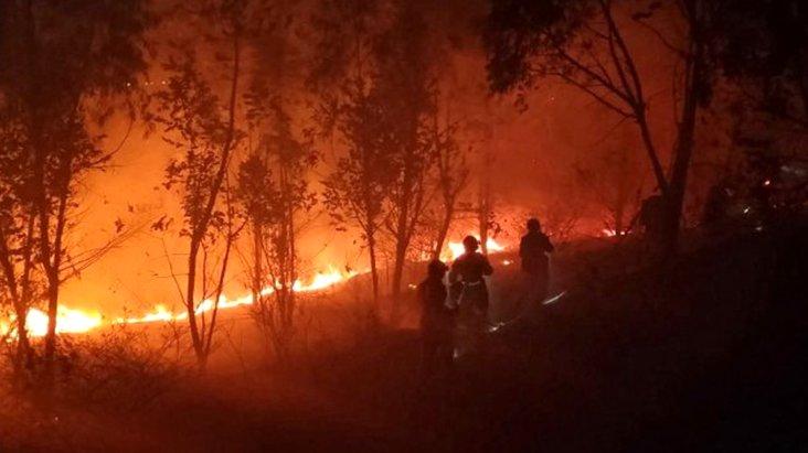 Çin'de koronavirüsten sonra orman yangını felaketi: 19 ölü