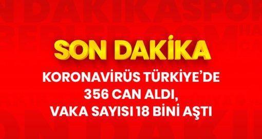 Koronavirüs Türkiye'de 356 can aldı, vaka sayısı 18 bini aştı