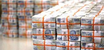Milli Dayanışma Kampanyası'nda toplanan bağış miktarı 1 milyar 60 milyon 728 bin liraya ulaştı