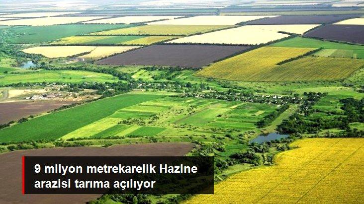 Son Dakika: Tarıma açılan Hazine arazilerinde ilk etapta 9 milyon metrekarelik alanda ekim yapılacak