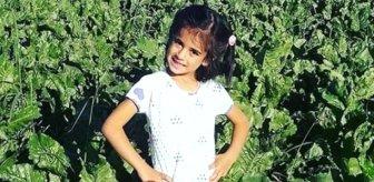 8 yaşındaki Eylül'ün katil zanlısı için istenen ceza belli oldu
