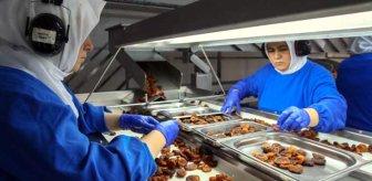 Türkiye'nin gıda ihracatı yılın ilk 5 ayında yüzde 118 arttı