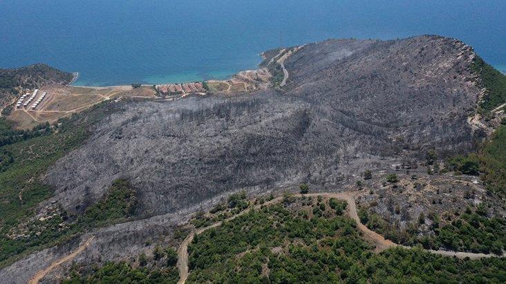 Menderes'teki orman yangınına neden olan piknikçi tutuklandı - Haber