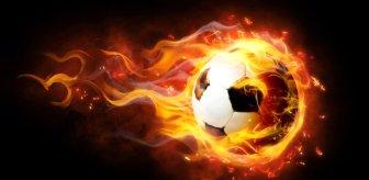 PFDK'dan Gaziantep FK Teknik Direktörü Sumudica'ya 4 maç ceza geldi