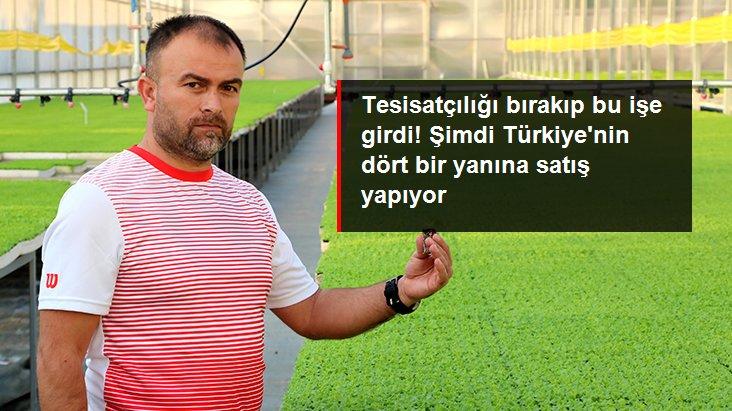 Su tesisatçılığını bırakıp fide üreticisi oldu! Şimdi Türkiye'nin dört bir yanına fide satıyor