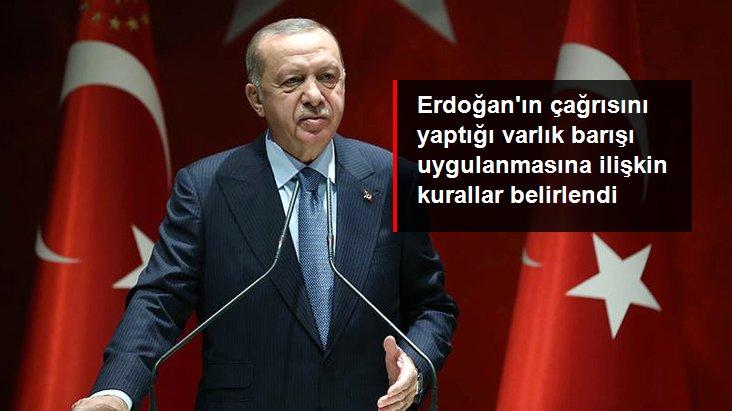 Cumhurbaşkanı Erdoğan'ın çağrısını yaptığı varlık barışı uygulanmasına ilişkin kurallar belirlendi