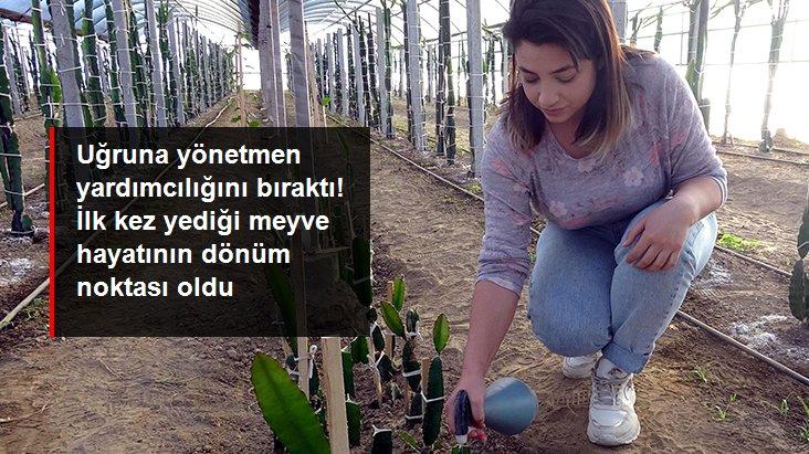 Yönetmen yardımcılığını bırakan genç kadın, memleketine dönerek annesiyle ejder meyvesi üretimine başladı