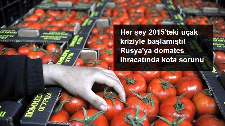 Rusya'ya domates ihracında kota 199 bin tonu buldu, siparişler durduruldu