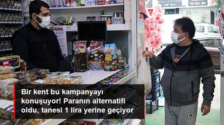 Alanya'da avokado çekirdeği alışveriş aracı oldu! Adet başı 1 lira sayılıyor