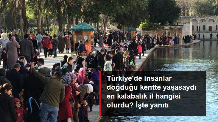 Türkiye'de insanlar doğduğu kentte yaşasaydı en kalabalık il Şanlıurfa olacaktı