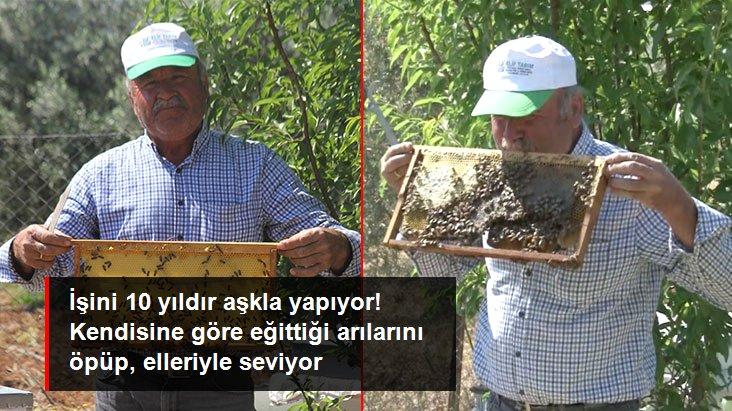 İşini 10 yıldır aşkla yapıyor! Kendisine göre eğittiği arılarını öpen arıcı, onları elleriyle seviyor