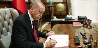 Erdoğan'ın masasındaki son seçim anketi! AK Partili isim canlı yayında paylaştı