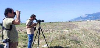 Herkes fotoğrafını çekmek için koştu! Türkiye'de ilk defa görülen hayvan heyecan yarattı