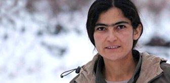 Nokta operasyon! PKK'nın sözde kadın sorumlusu, kampa giderken öldürüldü