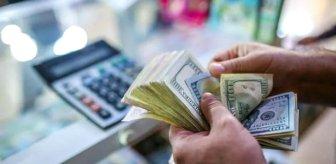Para birimi değer kaybeden ülkeden dikkat çeken karar! Dövizle çalışmayı yasakladılar